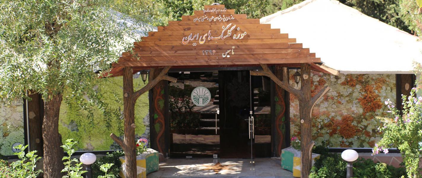 موزه گلسنگ های ایران